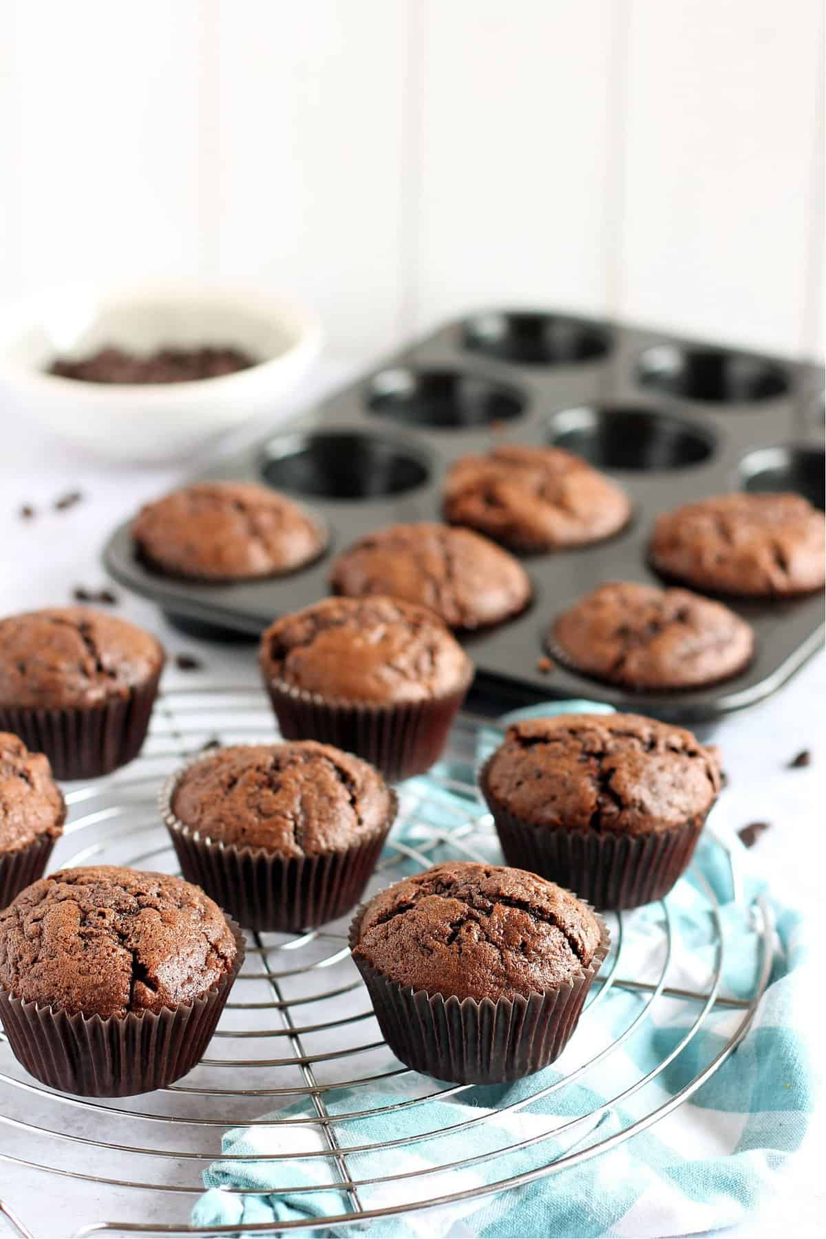 Chocolate courgette muffins on a cooling rack